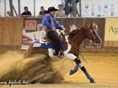Fedez�s(2014 WOB Reining Open Champion)