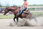 IC Ranch: reining
